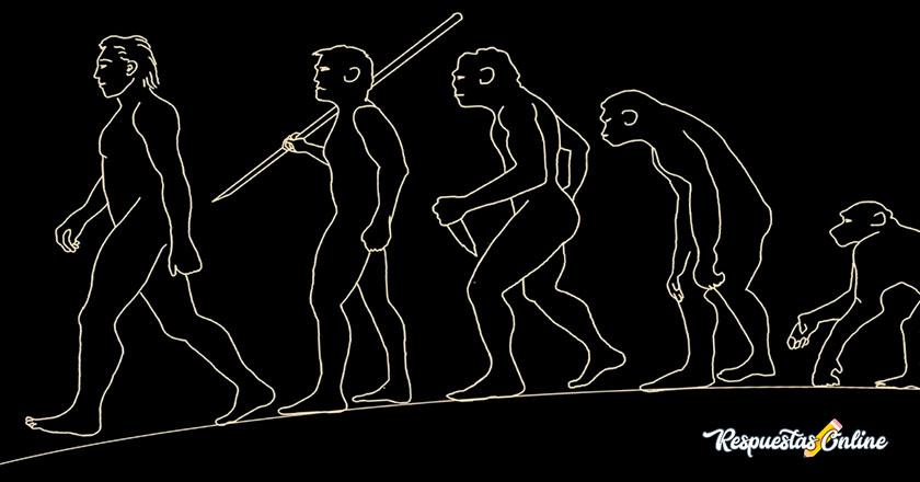 Antropología como ciencia social