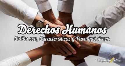 Cuáles son los derechos humanos