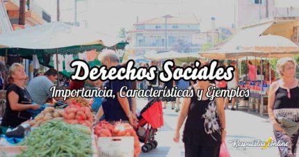 Derechos Sociales (Importancia, Características y Ejemplos)